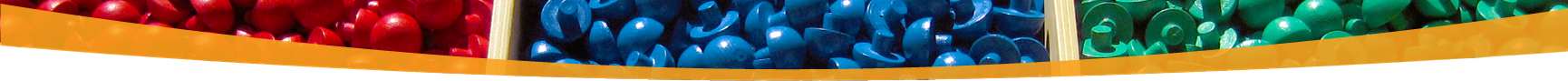 NAMC Montessori Upper Elementary Diploma Program Curriculum Samples